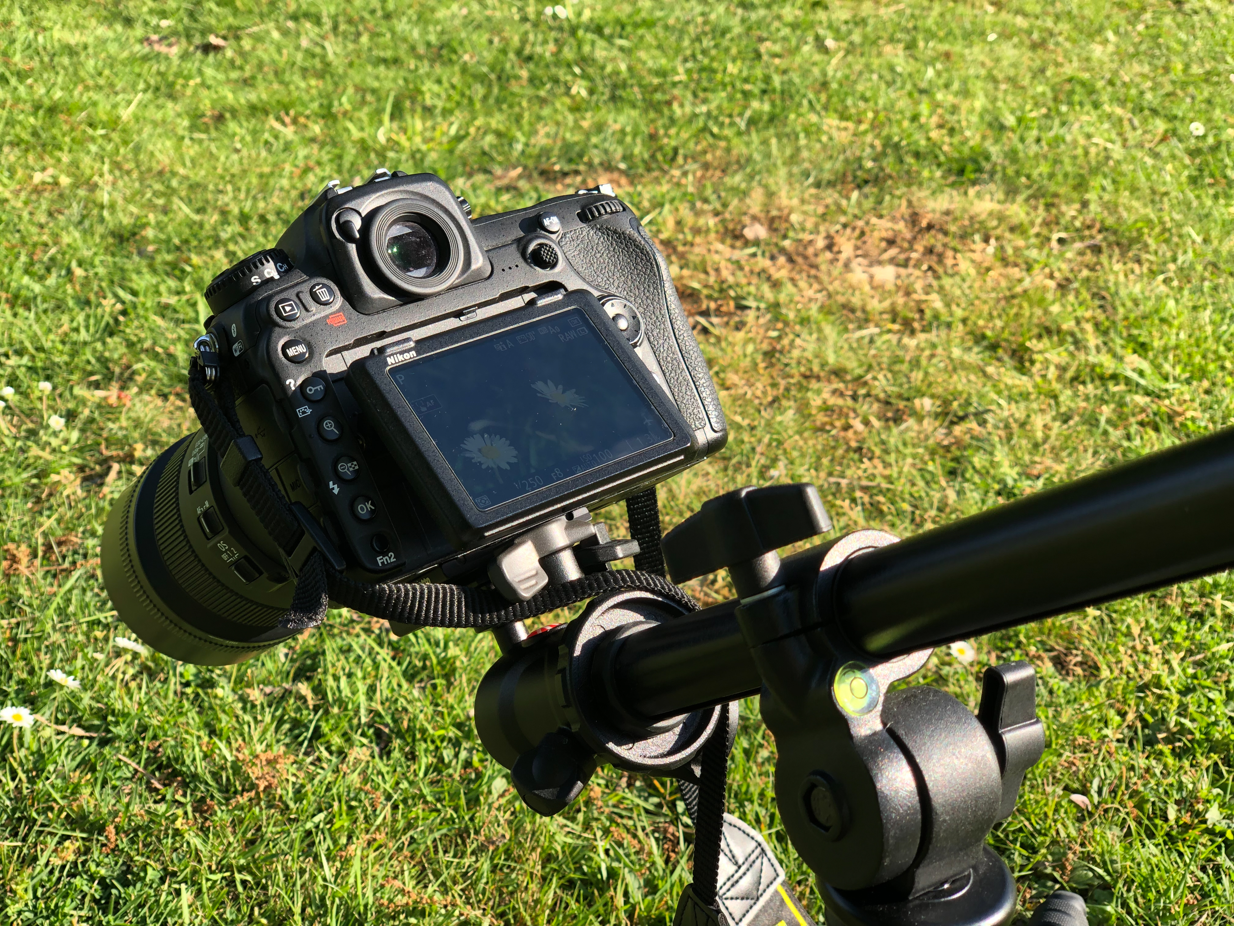 extension arm used for macro photography
