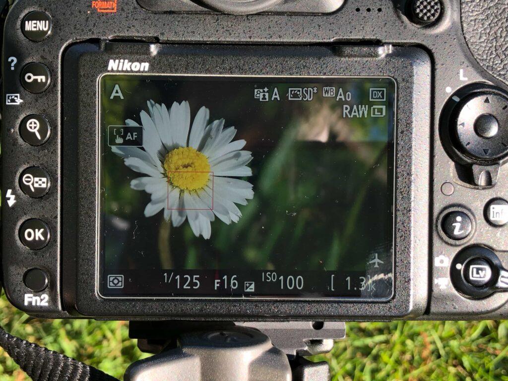 macro photography camera live view