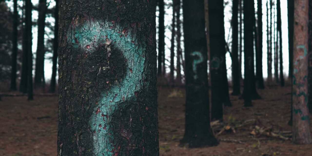 25 Creative Ideas to Photograph in a Boring Location