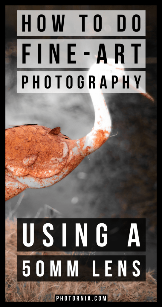 How to do fine-art photography using a 50mm lens, guide