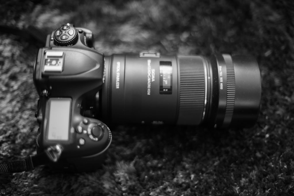 50mm vs 105mm - Which Prime Lens is Better?